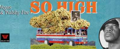 Mr vegas - So high