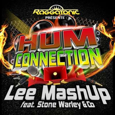Lee Mashup Feat Stone Warley & Co - Hum Connection